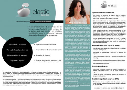 elastic business